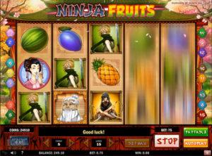 Ninja Fruits slotmaskinen SS-05