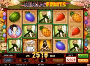 Ninja Fruits slotmaskinen SS-08