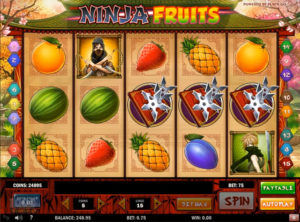 Ninja Fruits slotmaskinen SS-11
