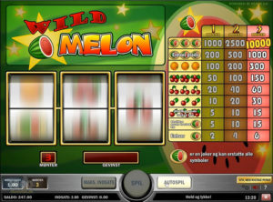 Wild Melon slotmaskinen SS-01