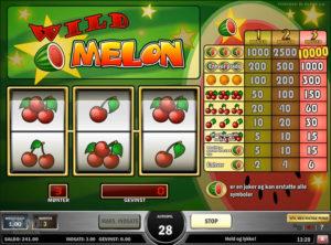 Wild Melon slotmaskinen SS-04