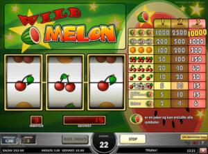 Wild Melon slotmaskinen SS-06