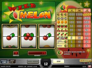 Wild Melon slotmaskinen SS-08