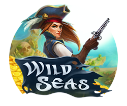 Wild-Seas_small logo