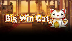 Big-Win-Cat_Banner-1000freespins