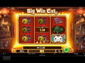 Big-Win-Cat_slotmaskinen-05