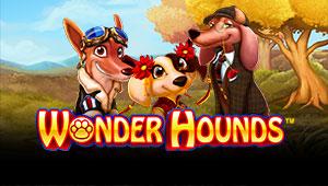 Wonder-Hounds_Banner-1000freespins